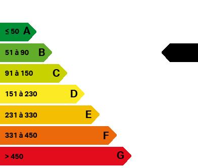 energy_level